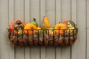 gourds-204929_640
