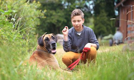 5 zdrowych powodów do posiadania psa