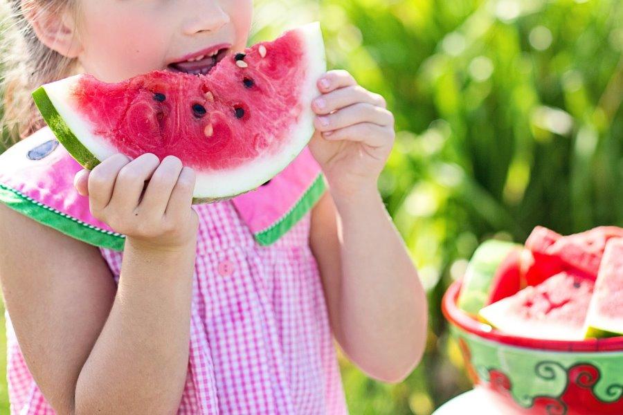 watermelon-846357_1280_jill111